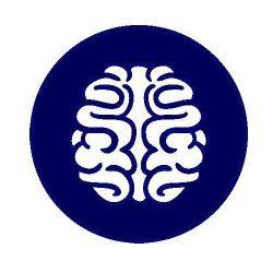 reoencephalography